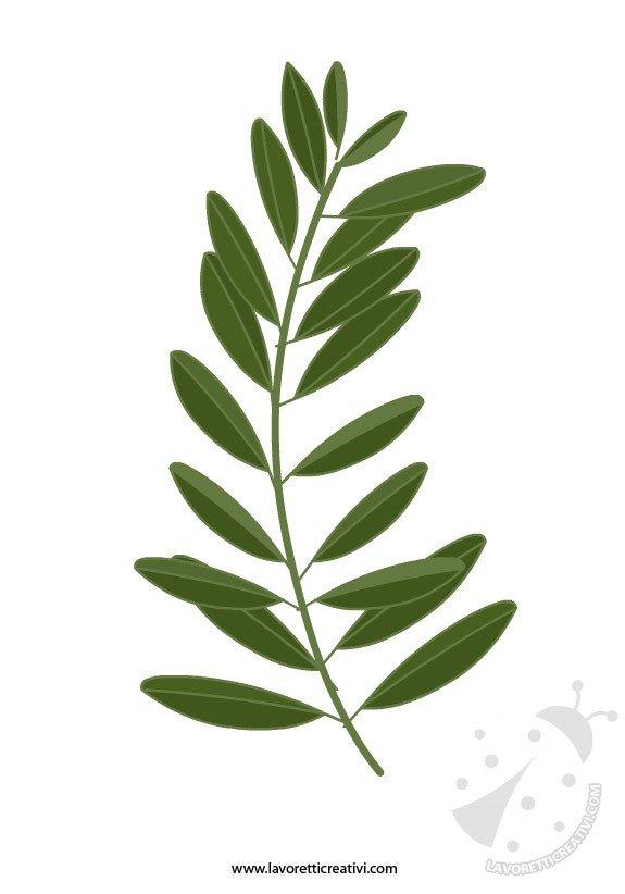 ramo ulivo Domenica delle Palme