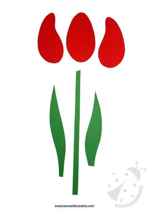 tulipano-festa-mamma-1