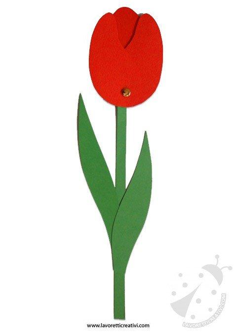 tulipano-festa-mamma-fiori-facili