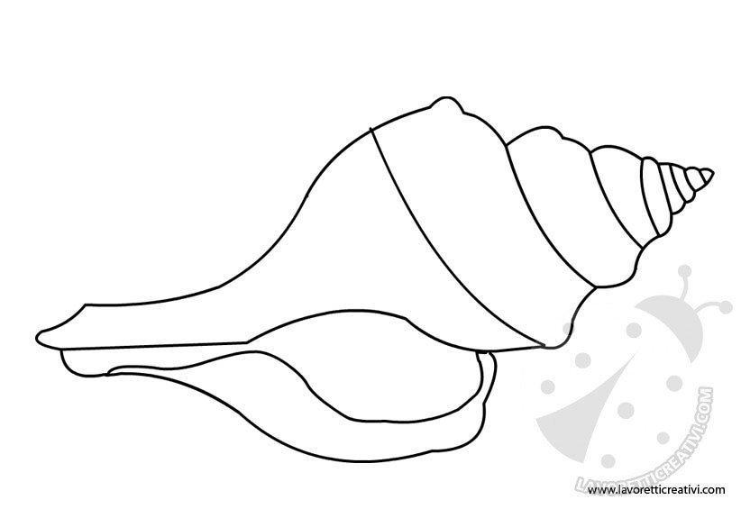 sagoma-conchiglia