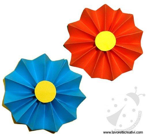 fiore-fisarmonica-5