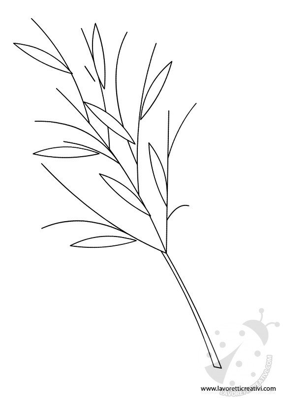 mimosa-festa-donna