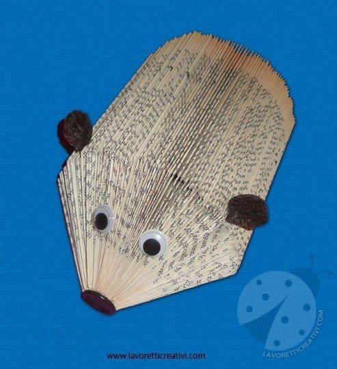 libro-riccio-7