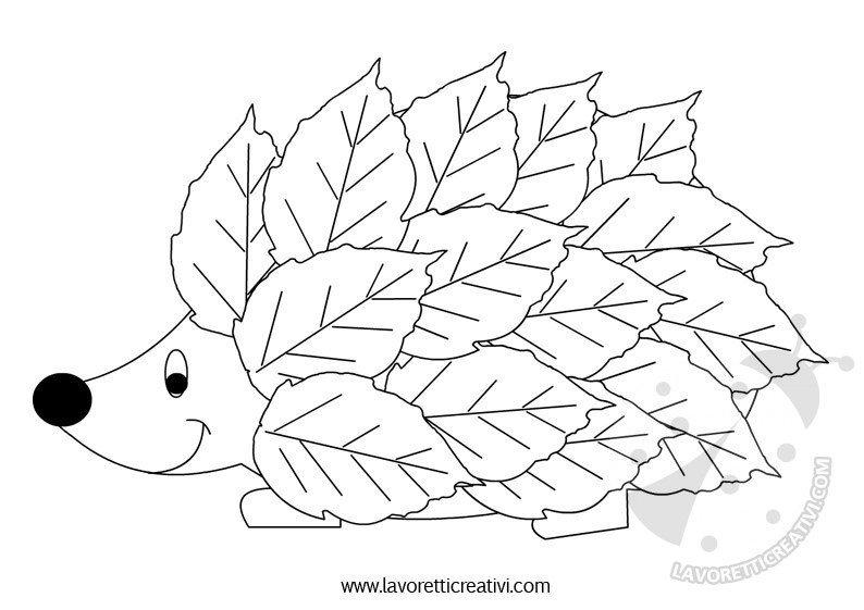 riccio-foglie-2