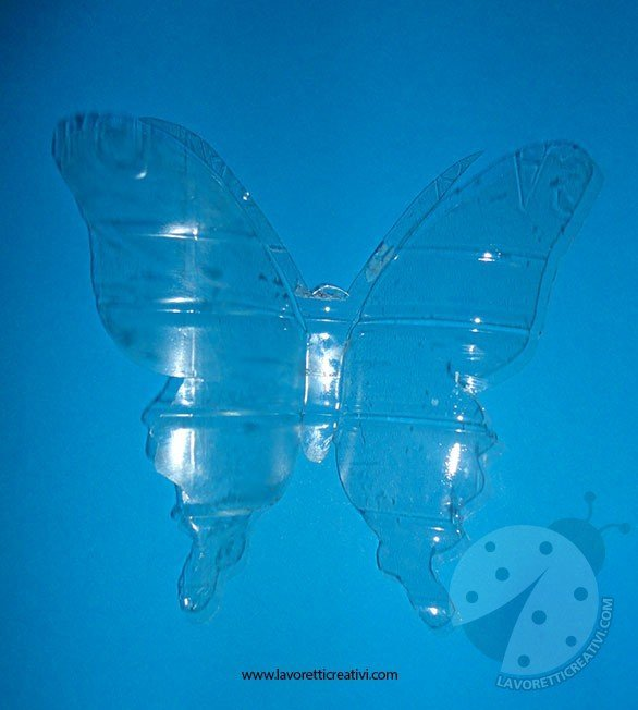 farfalla-bottiglia-2