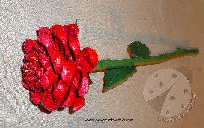 rosa-pigna-3