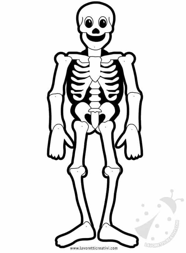 scheletro-mobile