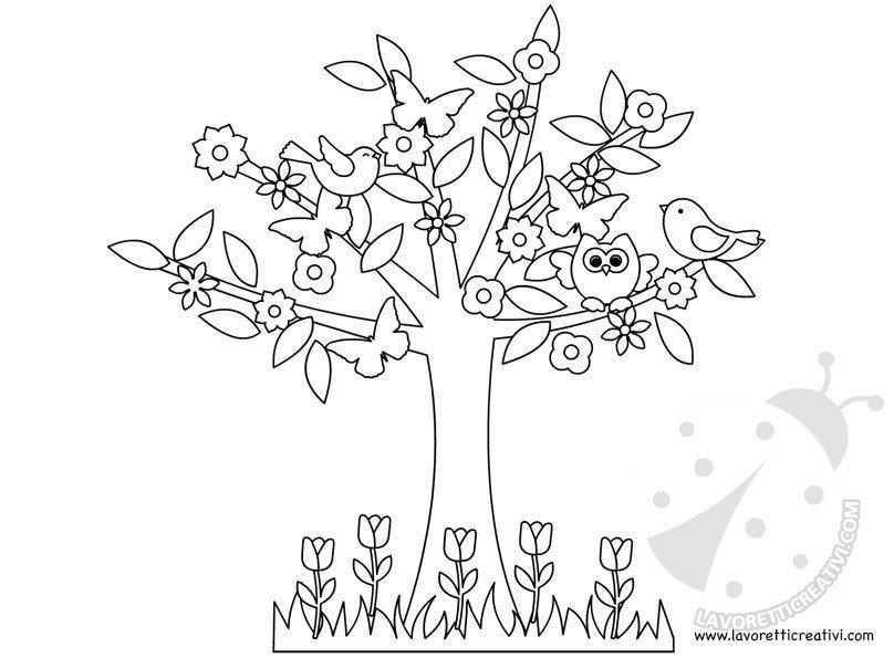 Albero della primavera scuola primaria lavoretti creativi for Foto di alberi da colorare